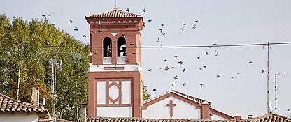 Imagen de Buenavista de Valdavia
